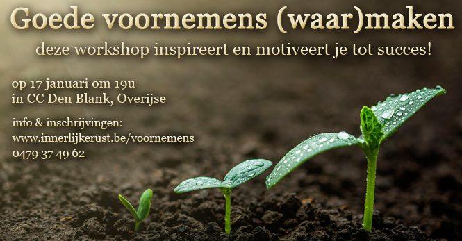 goede voornemens (waar)maken workshop